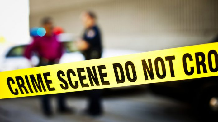 """Fiction: """"Jordan Brown, CSI"""""""