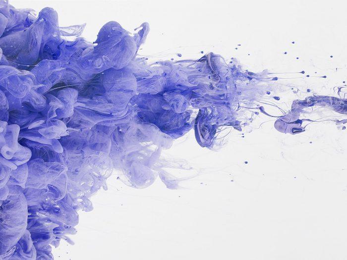 Protruding Purples